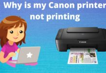 Why is my Canon printer not printing 3
