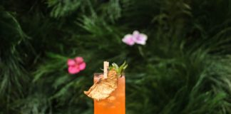 Celebrex & Alcohol